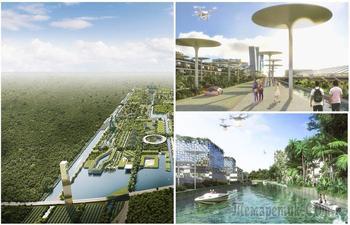 Умная мусорка и локаторы выстрелов: 11 технологий, которые составляют концепт smart-города