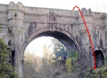 Таинственное явление: 600 собак прыгнуло с моста