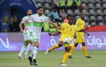 Няша и Махачи испугали Алжир