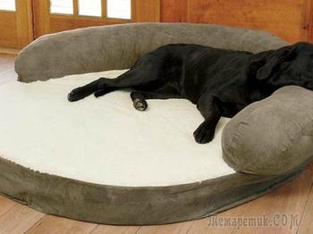 Как сшить лежак для собаки своими руками