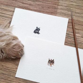 Невероятно реалистичные крошечные рисунки животных от Ирины Малаховой