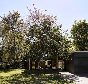 Небольшой дом с огромными окнами в Австралии