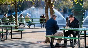 В Германии развенчали миф о «шведском рае» в ситуации с коронавирусом