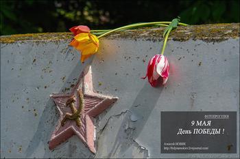 Фотопрогулки...9 мая, День Победы