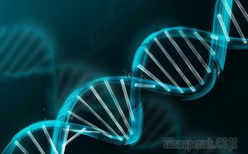25 фактов о ДНК, которые помогут вам разобраться в себе