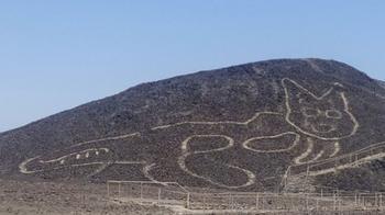 На плато Наска нашли гигантского кисика