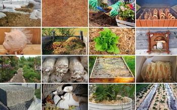 16 оригинальных способов использования древесных опилок на даче