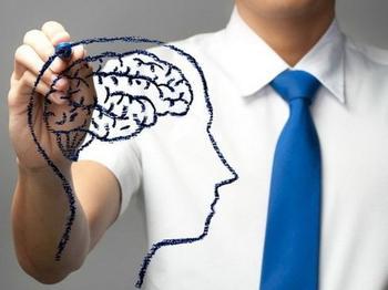 Наследственность назвали главной составляющей высокого интеллекта