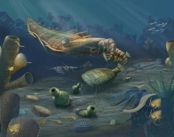 Массовое вымирание: стоит ли ждать конца?