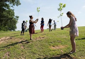 Диплом за саженцы: на Филиппинах выпускники обязаны посадить 10 деревьев