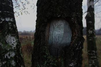Картины на стволах деревьев
