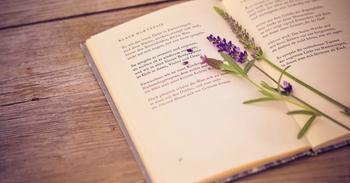 Стихотворения, раскрывающие каждый знак зодиака