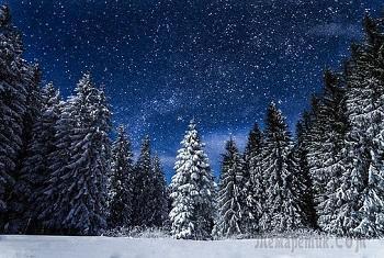 Сегодня ночью падал снег (Стих)