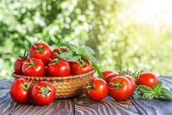 Чем полезны помидоры: интересные факты, которые вы не знали