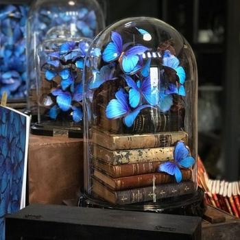 Красочные композиции с бабочками из бумаги