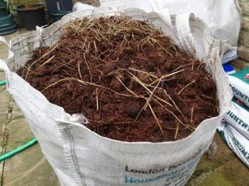 Что внести в почву осенью, чтобы повысить ее плодородие