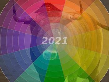 В каком цвете лучше всего встречать 2021 год?