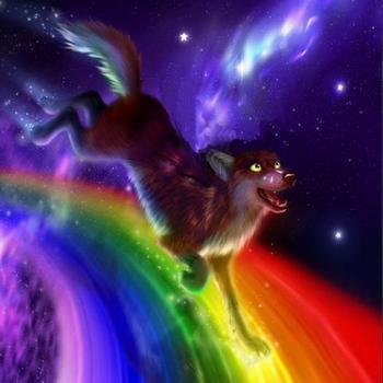 Бегом по радуге
