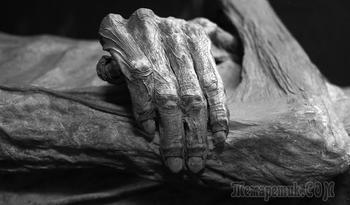 Удивительные мумии нового времени и их приключения