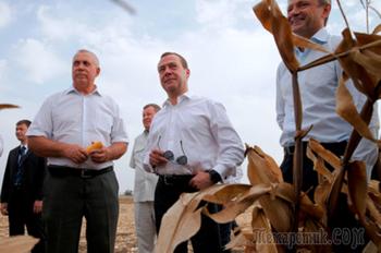 Медведев предложил изменить стандарт питания россиян