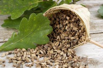 Кора дуба: инструкция по применению — рецепты из коры дуба