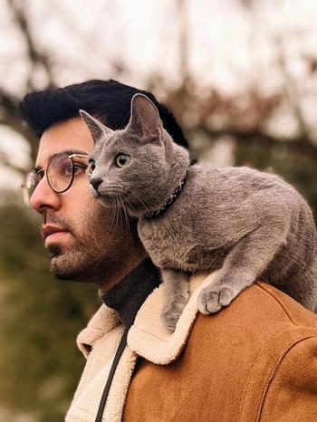18 фото от участников флешмоба «Кот на плече»