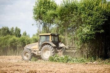 «Мираторг» вернул в сельхозоборот 85 тыс. га заброшенных земель