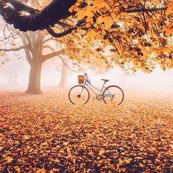 Российский фотограф показал, как выглядит осень в разных уголках мира