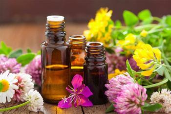 5 эфирных масел, которые помогут контролировать работу гормонов
