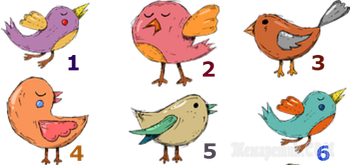 Тест. Какую птичку вы выберете?