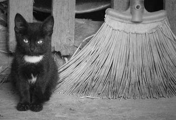 Баба Яга и ее Черный кот