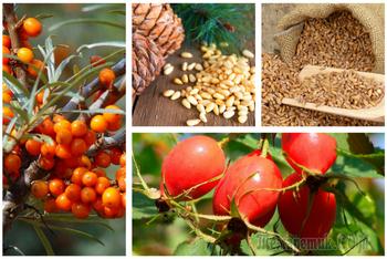 Суперфуды из России: доступные, знакомые и очень полезные продукты