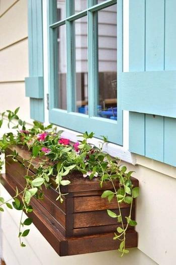 Яркие идеи для дачи, как установить чудесные цветы в ящики за окном