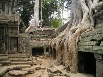 Ангкор – древнейший мегаполис, который современные учёные считают гигантской картой звездного неба