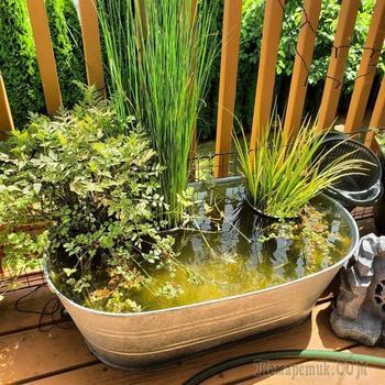 Удивительные идеи мини-пруда для небольшого сада или террасы