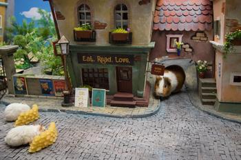 Хомякополис — миниатюрный город хомяков, который выглядит лучше, чем твой