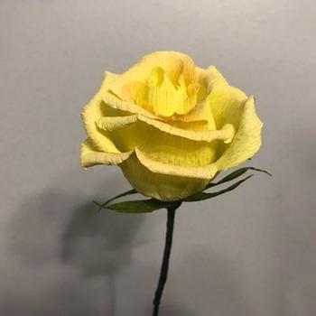 Невероятно реалистичные цветы индийского художника Сураба Гупты