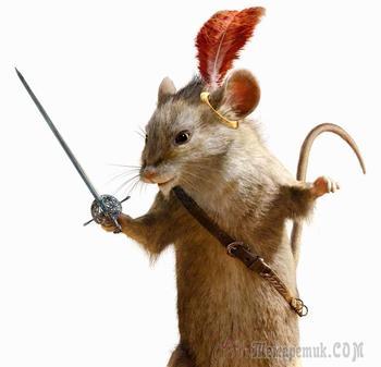 О людях и крысах...