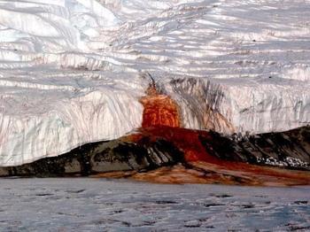Что скрывают величественные льды Антарктиды?