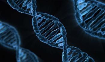 15 биологических отличий между мужчинами и женщинами