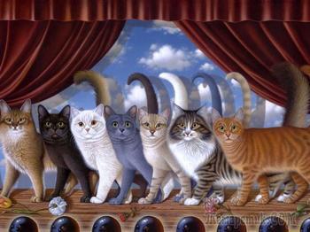 Семь обычных кошек (Стих)