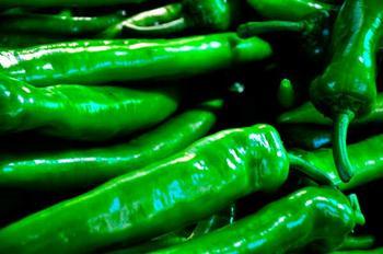 Лучшие сорта зеленого острого перца