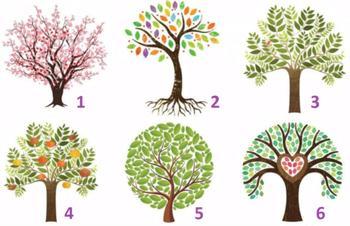 Красивый тест с деревьями расскажет, чего вам не хватает в отношениях
