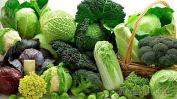 Виды капусты: особенности выращивания, польза, свойств