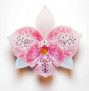 Орхидеи из стекла от Лауры Харт