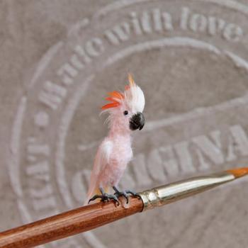 Крошечные реалистичные птицы художницы Кэти Дока