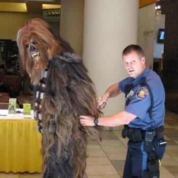 Полицейские будни в прикольных картинках