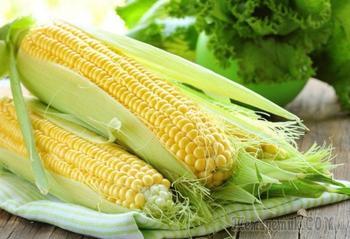 Посадка кукурузы в открытый грунт: как получить хороший урожай при минимальном уходе