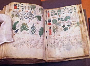 Ученый утверждает, что ему удалось расшифровать таинственную рукопись Войнича