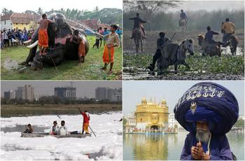 Интересные снимки, сделанные в Индии
